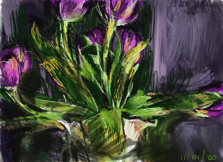 tulips2a