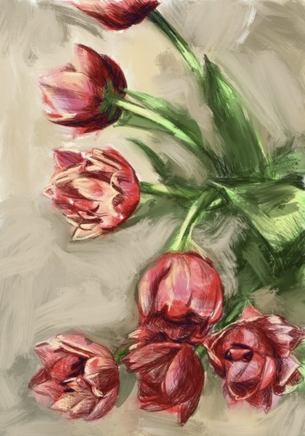 tulips3